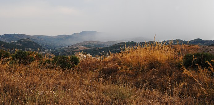 Sicily, Before The Rain, Grass, Dahl