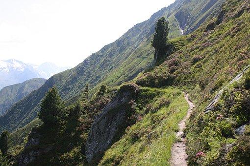 Mountain, View, Away, Path, Berliner Höhenweg, Gams Hut
