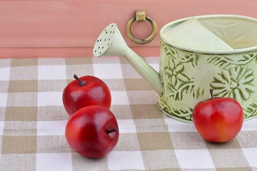 Apple, Still Life Photography, Red Fruits