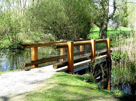 Bridge, Web, Wood, Pond, Nature, Lake Park, Kreuzlingen