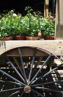 Cart, Wooden, Static, Display, Wheel, Round, Circular