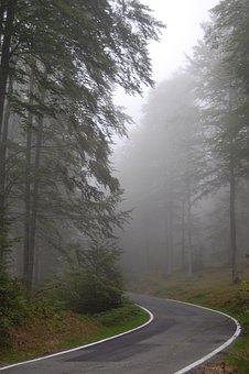 Fog, Road, Path, Nature, Circular, Navarre, Aralar