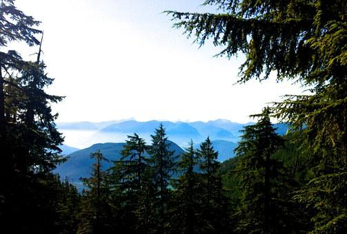 Panorama, Mountains, Woods, Spruce, Howe Sound, Vista