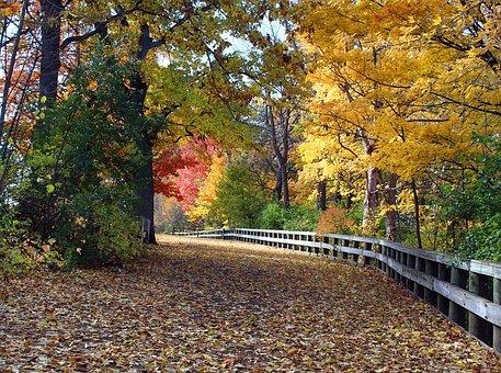 Appleton Wi, Telulah Park, Hike, Autumn, Color, Leaves