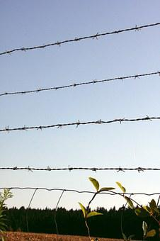 Barbed Wire Fence, Barbed Wire, Metal, Fence, Iron