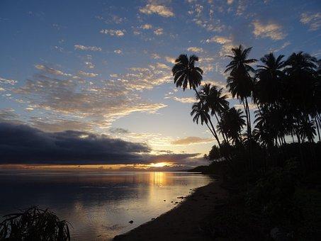 Palm, Hawaii, Holiday, Sunset, Molokaii, Beach, Sea