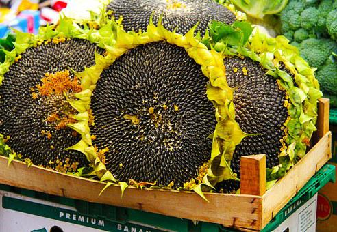 Sunflower, Seeds, Market, Stary Kleparz, Traditional