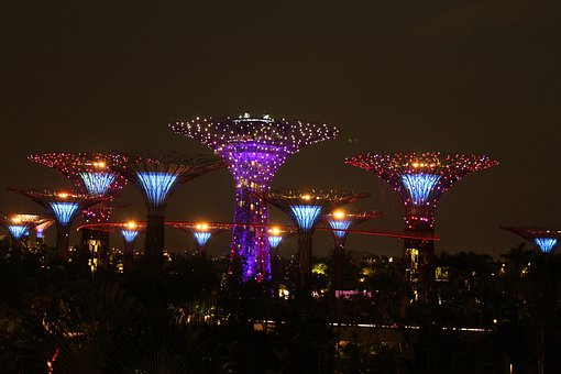 Night View, Singapore, Gardens Bay, Giant Tree, Asia