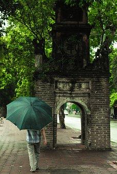 Vietnam, Hanoi, Hoankiem Lake, Summer, Day, Man, Green