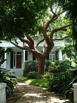 Key, West, House, Key West, Tropics, Florida, Coast