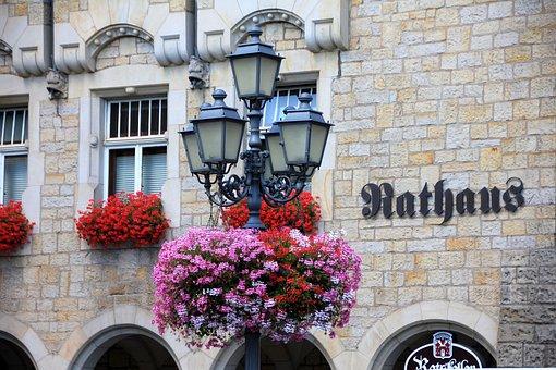 Building, Town Hall, Window, Lantern, Flowers, Bloom