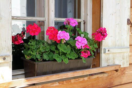 Flower Box, House Jewelry, Window Flower, Window