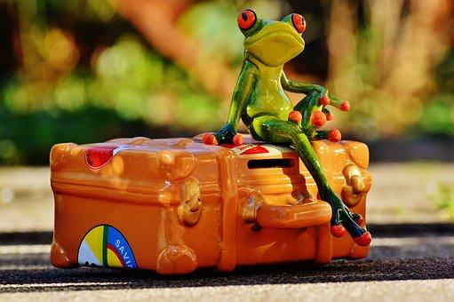 Frog, Travel, Holiday, Fun, Funny, Fig, Go Away, Animal