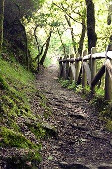 Path, Galicia, Trail, Landscape, Nature, Tourism, Sky