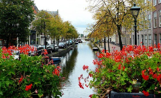 Canal, Water, Channel, Amsterdam, Holland, Netherlands