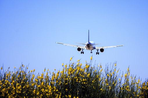 Plane, Landing, Landscape, Sky, Approach, Blue, Travel