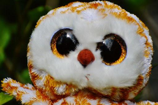 Barn Owl, Bird, Feather, Glitter Eyes, Stuffed Animal