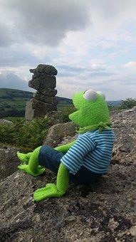 Kermit, Frog, Bowerman's Nose, Dartmoor, Devon, England