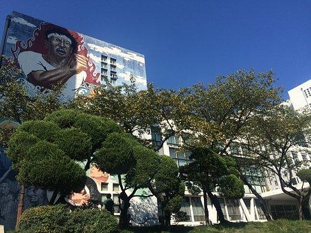 Structure, Nature, Kyunghee University, University