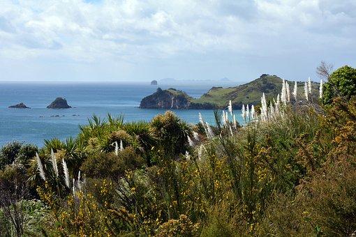 Coromandel Peninsula, New Zealand, Landscape