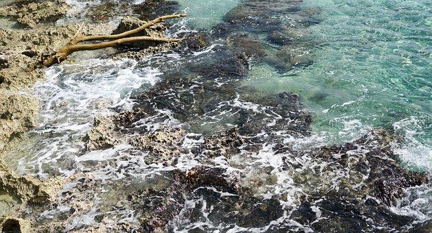 Mexico, Caribbean, Rocks, Water, Reef, Coral, Beach