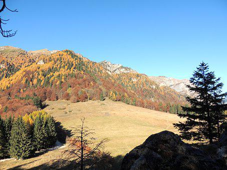Royal Sheepfold, Mountain, Sinaia, Landscape