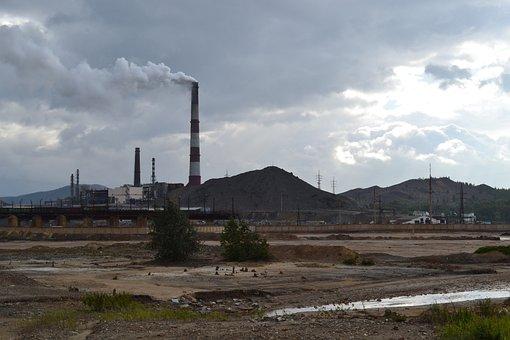 Ecology, Plant, Air Pollution, Damage, Trumpet