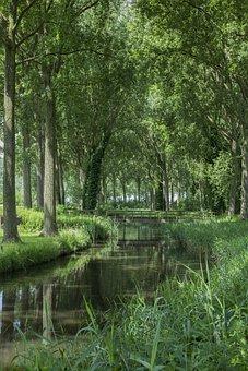 Bruges, Lady, Channel, Light, Nature, Belgium