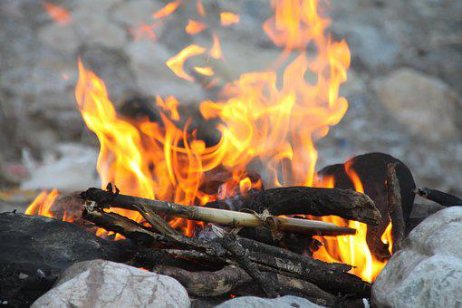 Fire, Woods, Camping, Nature, Forest, Travel, Active