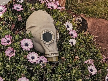 Mask, Garden, Flowers, Creepy, Evil, Grunge, Horror