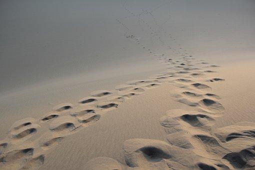 Desert, Foot Mark, Morning, Sand, Feet Prints