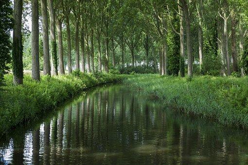 Damme Bruges, Channel, Light, Nature
