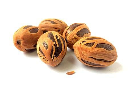 India Coconut, Muskat, Nutmeg, Myristica Fragrans