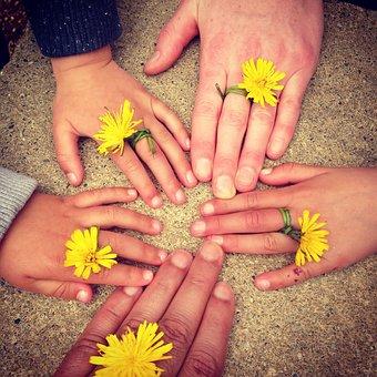 Family Hand, Outdoors, Ireland, Family Happy