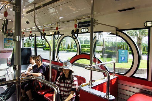 Disney, Japan, Resort Cruise, Tokyo, Mickey