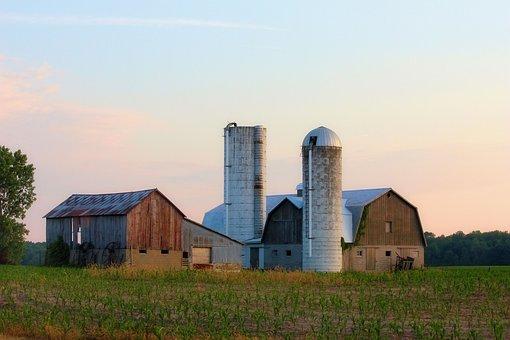 Farm, Barn, Silo, Corn, Sunset, Sky, Grass, Nature