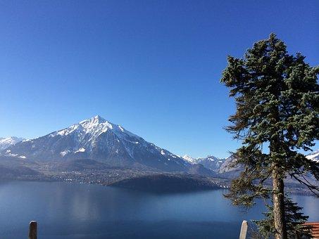 Mountain, Lake Thun, Bernese Oberland, Lake, Landscape