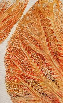 Leaf, Nature, Painting, Structire, Dry, Fall