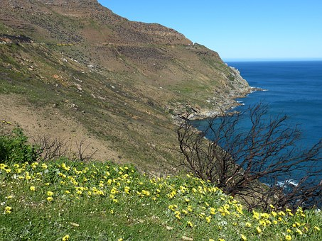 South Africa, Sea, Hout Bay, Cape Peninsula, Nature
