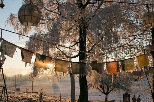 Winter, Frozen, Morning, Sunrise, Switzerland