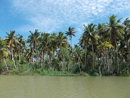 Backwaters, Poovar, Trivandrum, Kerala, Lake