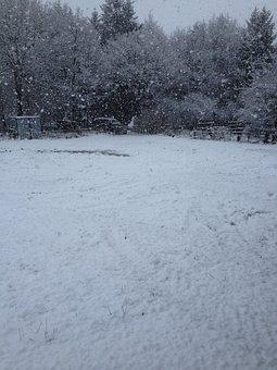 Winter, Snow Storms, Cold, Bad Vista
