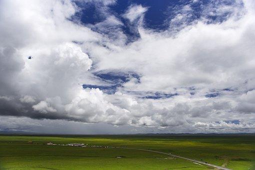 Grassland, Prairie, Landscape, Nature, Sky, Grass