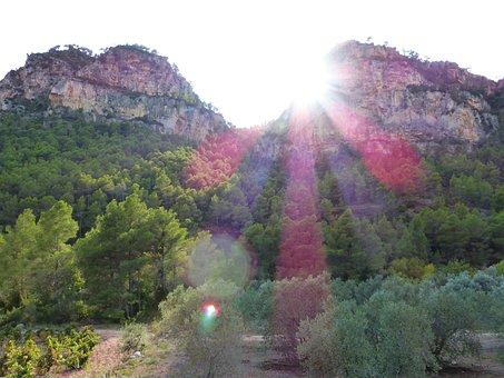 Sunset, Mountains, Forest, Landscape, Olive Trees