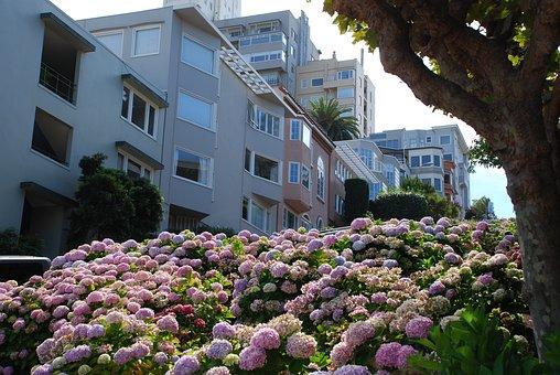 San Francisco, Lombard, Hill, Landmark, Destination