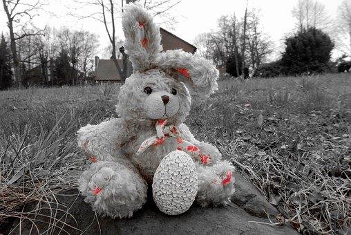 Hare, Soft Toy, Fabric, Stuffed Animal, Teddy Bear