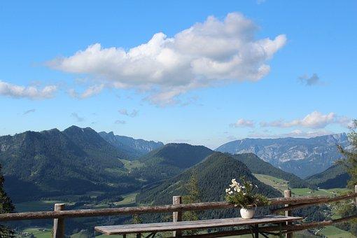 Schärtenalm, Berchtesgaden, Alm, Alpine, Landscape