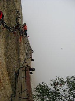 Mountain, Pinus Armandii, Cliff, Adventure, China