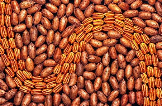 Pecans, Shelled, Unshelled, Nuts, Close-up, Macro, Food