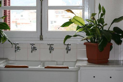 Kitchen Sink, Cranes, White, Metal, Green, Potted Plant